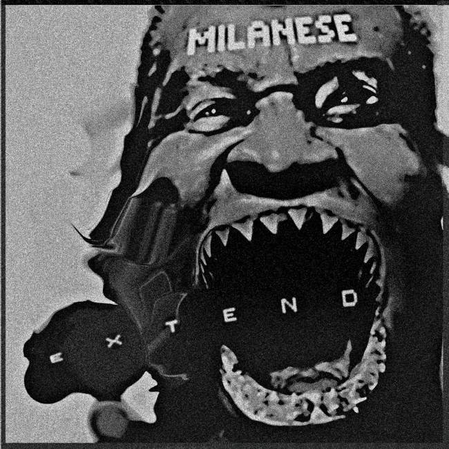 ZIQ165_Milanese_Extend