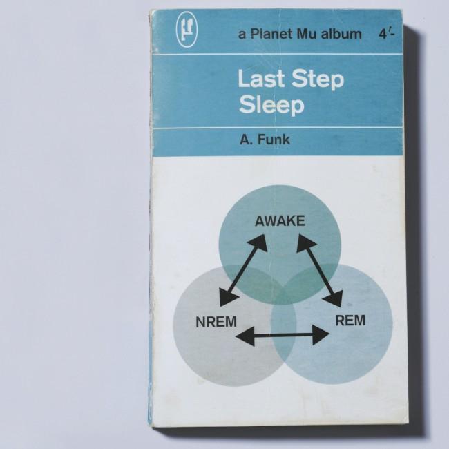ZIQ303_LastStep_Sleep